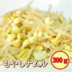 送料無料 お試し 大豆もやしナムル(冷凍 業務用)(フルーツキムチ)300g
