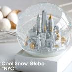 CoolSnowGlobesNYCニューヨーククールスノーグローブニューヨ...