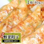 野菜餃子 40個入 1箱 / ぎょうざ ギョウザ ギョーザ グルメ ご当地 お取り寄せ 冷凍餃子 国産 国産野菜 国産豚肉