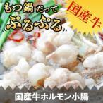 【ホルモン】てっちゃん(小腸)200g もつ鍋/焼肉 国産牛【国産】【焼肉 バーベキュー】