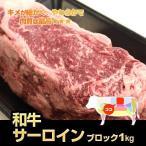 【九州産】和牛サーロインブロック1kg ステーキにローストビーフに【国産 九州産】【牛肉 ブロック】