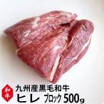 【九州産】和牛ヒレ肉ブロック500g ステーキに!ローストビーフに【牛肉 ブロック】【黒毛和牛】