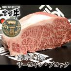 牛肉 宮崎牛 サーロイン ブロック 1kg ブロック 肉 かたまり 国産 宮崎県産 和牛 黒毛和牛