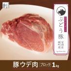 ぶどう豚 宮崎県産  豚ウデ肉ブロック1kg 銘柄豚  ブロック