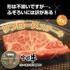 singaki-meat_sk10004