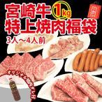 牛肉 宮崎牛 入の豪華! 焼肉 バーベキューセット 1kg 送料無料 オマケ付:焼肉のタレ BBQ バーベキュー
