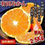 有田みかん 訳あり 2.5kg 和歌山県産 送料無料(北海道