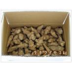 送料無料 生菊芋 【生キクイモ】 3kg (土付き)