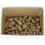 送料無料 春堀り 雪の下 生菊芋(キクイモ)3kg
