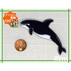 【送料62円】シャチB/ブルー/アイロンアップリケワッペン/刺繍/水族館/オルカ/イルカ/クジラ