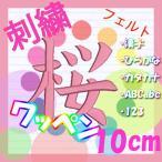 10cm 生地13色×糸39色 (フェルト)刺繍ワッペン