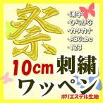 10cm 24色 (ポリエステル)刺繍ワッペン