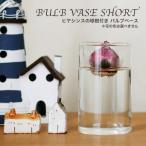 ヒヤシンス球根付きの水栽培セット BULB VASE SHORT(ガラス製フラワーベース)