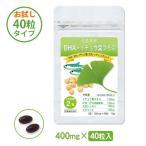 DHA・イチョウ葉プラス ハーフサイズ◎DHA EPA イチョウ葉 大豆レシチン ビタミンE入 サプリメント(約20日分)
