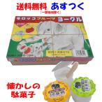 モロッコフルーツヨーグル 60個+当り分10個入り サンヨー製菓 駄菓子