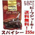 ビーフジャーキー マリアーニ ファイブスパイス ビーフジャーキー 255g Mariani Five Spice Beef Jerky