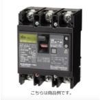 日東工業 GE102CA2P60AF100漏電ブレーカー 協約形 GE-C 定格電流60A 2P2E  100AF