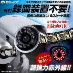 防犯カメラ 監視カメラ OL-017 屋外 赤外線LEDライト
