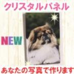Yahoo!SKS.comクリスタルパネル KR1510 ペット 犬 猫 写真たて デジカメプリント デジカメアクセサリー 壁掛け フォトフレーム メモリアル パネル 写真加工