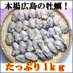 広島産冷凍かき!2L〜Lサイズ1Kg!