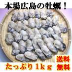 広島産冷凍かき!2LからLサイズ1Kg!【送料無料】 ギフト 御歳暮