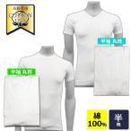 インナーシャツ 2枚セット 綿100% アンダーシャツ 丸首 Vネック メンズ 下着 アンダーウェア 半袖 丸首 コットン