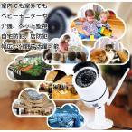 監視カメラ ワイヤレスカメラ IP66防水 1080P 200万画素 COMSセンサー IR-CUT 暗視機能 P2P  動体検知 754GA
