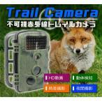トレイルカメラ 1200万画素 HD動画 CMOSセンサー付き 動体検知  IP54 暗視カメラ 時差撮影機能 不可視赤外線 動物撮影 防犯監視カメラ HCRD1000