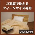 軽量 ニューマイヤー 毛布 ブランケット クイーンサイズ 200×200cm  クィーン 大きい 防寒 洗える やわらか あたたか あったか 暖かい ケット Q