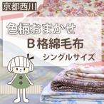 色柄おまかせ 京都西川B格綿毛布 シングル