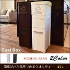 ゴミ箱 分別 スリム ダストボックス 2分別 日本製 キッチン ふた付き 合計42L