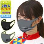 マスク バルブ 付き 3Dバルブマスク 2枚 男女兼用 通気 排熱 洗濯 可能 オールシーズン 蒸れない