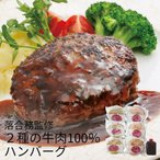(産地直送・送料無料) ラ・ベットラ・ダ・オチアイ 落合務監修2種の牛肉100%ハンバーグ (-S9028-602A-) | 内祝い ギフト 出産内祝い 引き出物 快気祝い