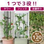 トレリス アイアン / まきまきトレリス60x120cm