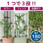 トレリス アイアン / まきまきトレリス60x180cm