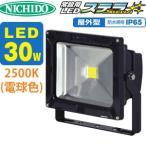 日動工業 LJS-30D-DB-25K 常設用LED ステラ 30W SP付 【電球色】