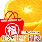 礼盒 - お味見下さい!店長が選んだ旬の味覚福袋☆ 3kg