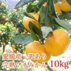 みかん  愛媛県産 訳ありプチ完熟みかん 10kg  ご家庭用  サイズ不揃い わけあり
