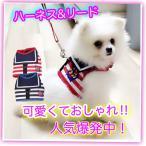 犬 猫 ハーネス マリン風 胴輪 ベストタイプ ハーネス ペット用 ドック用品 ドッグウェア 首輪 マリン ボーダー 犬服 ペット服 送料無料