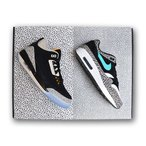 AIR JORDAN X MAX PACK 'AIR JORDAN 3 SAFARI X AIR MAX 1 ELEPHANT' 'NIKE X ATMOS' ジョーダン マックス パック アトモス 【MEN'S】 multi-color 923098-900