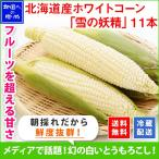 とうもろこし 北海道産 お取り寄せ お土産 美味しい トウモロコシ 雪の妖精 11-12本 BBQ バーベキュー ホワイトコーン グルメ ギフト