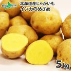 じゃがいも ジャガイモ 北海道 インカのめざめ 5kg 産地直送 馬鈴薯 野菜 ギフト プレゼント 食べ物 ご当地