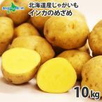 ジャガイモ 北海道 インカのめざめ 10kg 産地直送 馬鈴薯 じゃがいも バレンタイン ギフト まとめ買い 食べ物 節分 プレゼント 巣ごもり 食品