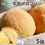 お菓子 パン メロンパン 北海道産 5個セット 手作り スイーツ ギフト
