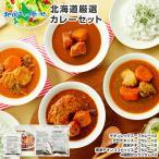 カレー レトルト 業務用 北海道 ご当地カレー スープカレー 10食セット グルメ お取り寄せ