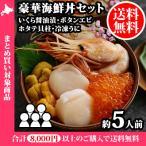 豪華海鮮丼セット(うにルイベ、いくら、ぼたんえび、ホタテ貝柱)約5人前 送料無料
