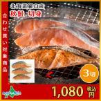 鮭 切り身 北海道産 真空 秋鮭 切身 5切 羅臼 甘口