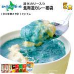 北海道 クリシュナ カレー セット レトルトカレー ご当地カレー 福袋 5食 グルメ お取り寄せ オホーツク 流氷カリー ギフト 敬老の日 プレゼント 食べ物
