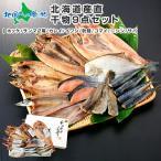 北海道 干物 冷凍 真ホッケ サンマ カレイ ニシン イワシ 秋鮭 コマイ サバ グルメ 海鮮 詰め合わせ セット