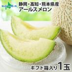 アールスメロン 1玉 フルーツ ギフト メロン お取り寄せ 送料無料 マスクメロン #元気いただきますプロジェクト(野菜・果物)